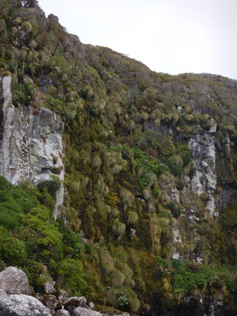cliff face 1