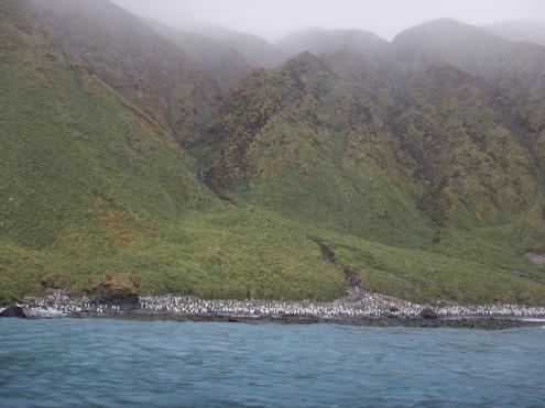 lusitania bay hills