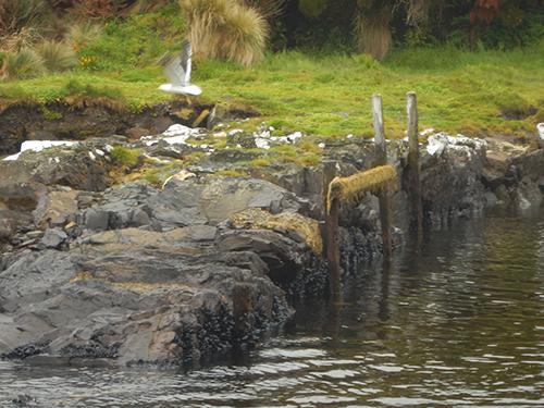 dock and slipway by shephers hut