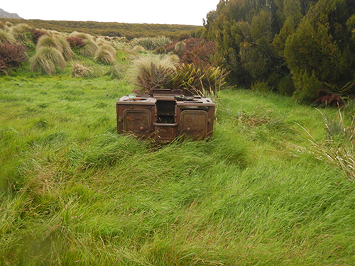 shepherd stove in tussocks